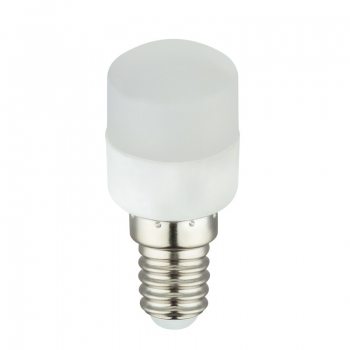 10616  LED BULB