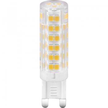 10701  LED BULB