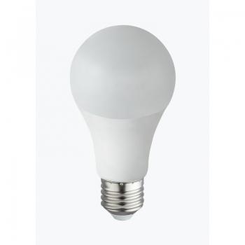 10767  LED BULB