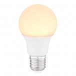 LED BULB  G106000K