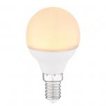 LED BULB  G106030K