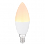 LED BULB  G106040K